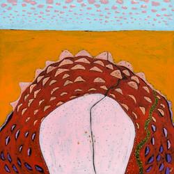 Sunrise over Mundi Mundi Plains Artist W