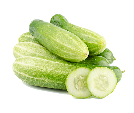 Here is the Marketmore Cucumber,Cucumis sativus. This is the true and original version of this cucumber and was Introduced in 1968 by Cornell University. It's long, slender, semi dark green skinned cucumber variety like the straight cucumber.This not the Marketmore 76 Cucumber. The fruits get to 8 - 9 inches long. Delicious smooth flavor over the cucumber flavor make these a very popular variety. Good producer and stays crisp in storage. Open pollinated 60 to 70 days from transplanting.