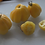 Here is the Tlacolula Yellow Tomato, Solanum lycopersicum. This indeterminate, regular-leaf small tomato was originally from