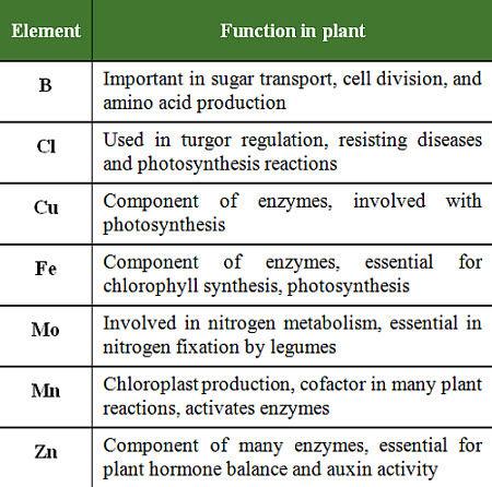 HRS super soil mix is a custom blend for maximum plant health