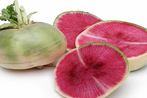 Here is the Watermelon Radish, Raphanus sativus acanthiformis. It is also know as the Rooseheart, Red Meat or Beauty Heart ra