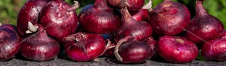 Red Marble Onion