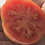 The Chocolate stripes tomato, Solanum lycopersicum, Is an indeterminate, regular-leaf tomato. It is one of the nicest striped