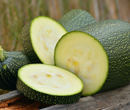 Here is the Grey Zucchini, Cucurbita pepo. It is an heirloom summer squash known for its crisp, white flesh and pale green, smooth and shiny skin. It dates back to the 1950's and is considered a market variety. They can range from a light green to darker green with speckels and produces 6 to 8 inch long fruits. It has a great smooth flavor and best picked young. Plants are not a vine but can grow to 2 - 4 feet long. The fruits have a very long shelf life and can be stored for months! This variety of squash is great for frying and baking but we like to pickle the young fruits in a pickling brine. Open pollinated, 70 to 80 days.