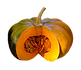 Here is the Musquee de Provence Pumpkin,Cucurbita moschata.It is also known as theFairytale pumpkin.This French heirloom is deeply ribbed with an orange umber colored skin and bright orange color inside and are a flattened type pumpkin. T