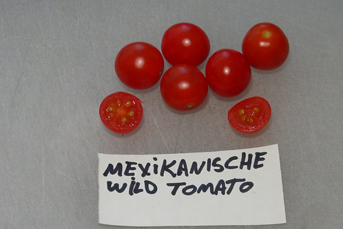 Here is the Mexikanische Wild Tomato , Solanum lycopersicum. This Tomato originates from Mexico and tolerates heat very well.