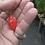 Here is the Piaozinho Pepper, Capsicum chinense, Scoville units: 100,000 ~ 350,000 SHU. This pepper originates from Brazil an