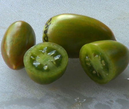 Here is the Green Tiger Tomato, Solanum lycopersicum, This tomato is a Artisan Seeds creation and is all the rage these days! The tomato is considered a elongated pointed plum type. They are green in color with a blush of pink when fully ripe and is a great producer with fruit sizes 1-1/2 to 2 inches and are crack-resistant with smooth skinned fruits and a nice balance of sweet and tangy flavor witch makes a great tomato sauce. They are Mid-season, indeterminate, regular leaf type tomato verity. Resistance to fusarium wilt and verticillium wilt. Indeterminate. 80 days.