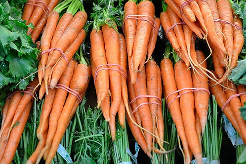 Here is the Tendersweet Carrot,Daucus carota subsp. sativus.This is a very popular carrot variety among gardeners. It is a
