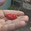 Here is the Aji Largo Racoto Pepper, Capsicum pubescens, Scoville units: 10,000 ~ 50,000 SHU. This variety of Rocoto pepper g