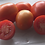 The Rio grande tomato, Solanum lycopersicum, is a highly sought after tomato! This indeterminate, regular-leaf tomato is one
