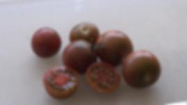 Black Cherry Tomato, Solanum lycopersicum