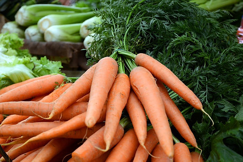 Here is the Scarlet Nantes Carrot,Daucus carota. It is a medium orange carrot root with anaverage size of 6 inches in lengt