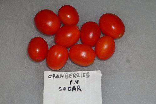 Here is the Клюква в сахаре Cranberries In Sugar Tomato, Solanum lycopersicum. This tomato originates from Russia. The fruits