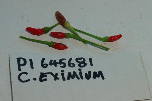 Here is the GRIF 15939 Pepper, PI 645681, Capsicum eximium, Scoville units: 500 to 5,000+ SHU. This rare Pepper originates fr