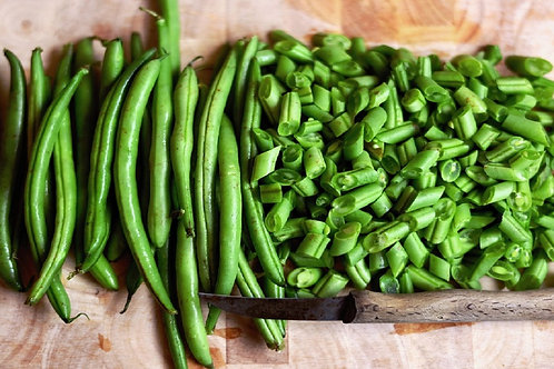 Here is the Blue Lake 47 Bush Bean, Phaseolus vulgaris. This bush bean variety is a stringless snap bean early type and also