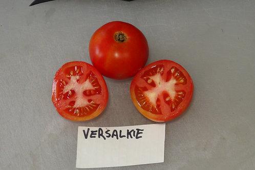 Here is the Versalkie Tomato aka Versaviya Tomato, Solanum lycopersicum. This tomato originates from Russia and was sourced f