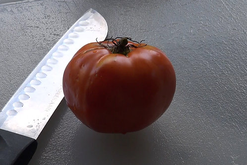 Here is the Delicious Tomato, Solanum lycopersicum, The Delicious tomato was Introduced by Burpee and holds the world's recor