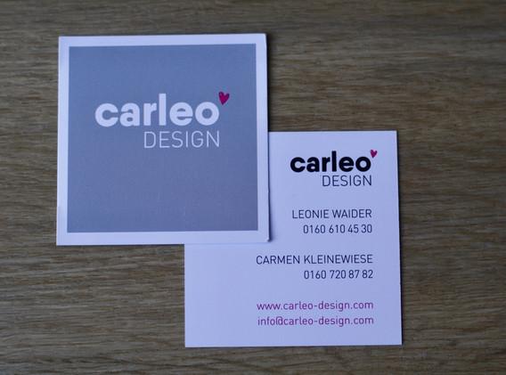 carleo 2