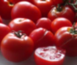 Totem Tomato (Dwarf)