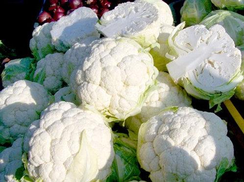 Snowball X Cauliflower