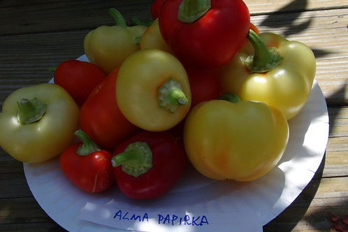 Here is the Alma Paprika Pepper, Capsicum annuum,Scoville units: 1,000 ~ 3,000 SHU. This variety originates from Hungary and