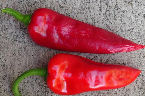 Here is the TatliBoynuz Biber Pepper (Sweet Horn Pepper), Capsicum annuum, Scoville units: 000 ~ 50 SHU. This Turkish sweet