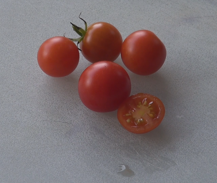 Here is the Sweet 100 Tomato, Solanum lycopersicum, The Sweet 100 tomatoes are cherry tomatoes and are about one inch round andRed orange tomatoes with 20 to 25 fruits on one bract. They are crack-resistant with smooth skinned fruits and a nice balance of sweet and tangy flavor which makes a great tomato sauce. A good northern climate tomato variety Indeterminate. Plants can get to 8 feet tall producing hundreds of tomatoes. Resistance to fusarium wilt and verticillium wilt. Indeterminate. open pollinated 70 days.