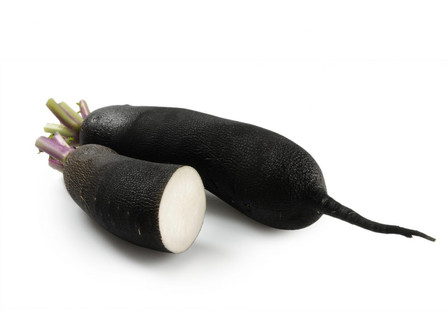 Here is the Long Black Spanish Radish, Raphanus sativus. It is an oblong 8 inch long root with a black skin and white flesh inside. We found it best to pickle this black radish due to it's sharp taste. They are a bit more spicy with a sharper bite then the round black radish. Radishes in general can be useful as companion plants for many other crops, probably because their pungent odor deters such insect pests as aphids. This is a great starter vegetable for new gardeners. Open pollinated, 50 days.