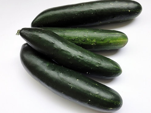 Here is the Poinsett Cucumber,Cucumis sativus. This is the true and original version of this cucumber. It's another dark ski