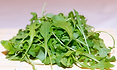 The Arugula plant is also known as Rocket, Eruca vesicaria comes in a few varieties. This listing is for the common Arugula varity. It is an annual herb in the Brassicaceae family. Arugula is grown widely in Syria, Lebanon, Egypt and Turkey, where its leaves and seeds are used as a herb or spice for flavoring food or in salads. Raw arugula is 92% water, 4% carbohydrates, 2.5% protein, and contains negligible fat. Arugula is best when used fresh, as it loses its flavor rapidly if dried. However, freeze-dried leaves retain their flavor relatively well for a few months. Plants get to 2 to 2.5 foot tall with oak leaf like foliage. Open pollinated 35 to 60 days depending on the stage you want to harvest.