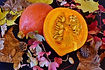 Here is the Red Kuri Squash, Cucurbita maxima. It is also known as the Hokkaido pumpkin. Red Kuri squash is a teardrop-shaped winter squash with a distinctive orange skin. Its shape is similar to a Hubbard squash, but much more manageable in size. Its skin is hard but thin, and is edible once cooked. Red Kuri has creamy yellow flesh, with a smooth texture and taste similar to cooked chestnuts. The fruits get to around 3 to 4 Lbs and is best harvested young before the Skins harden and seeds enlarge as the squash matures. Red Kuri squash are difficult to peel, so they are almost always cooked with their skin on. Plants or vines get to around 10 feet long and need space to spread out. Open pollinated 77 to 91 days.