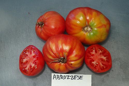 Here is the Abruzzese giant Tomato aka Pera d'Abruzzo, Solanum lycopersicum. This tomato originates from Italy. This Piriform
