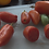 Here is the San Marzano Gigante 3 Tomato, Solanum lycopersicum. It was created as a third variation of the San Marzano tomato