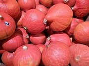 Red Kuri Squash