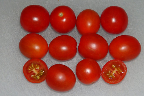 Here is the Vnuchok Tomato, Solanum lycopersicum. This tomato originates from Russia and is a hanging basket variety. It is a