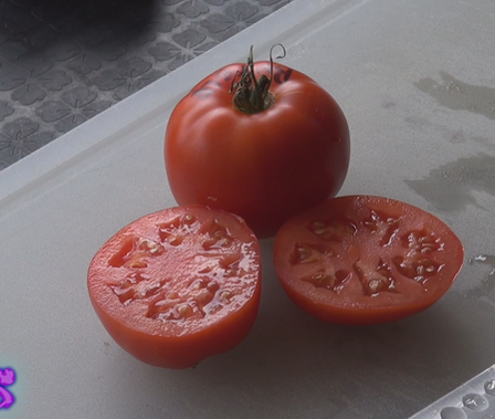 Here is the Rutgers tomato, Solanum lycopersicum, The Rutgers tomato was introduced in 1934 by Lyman Schermerhorn and are great producers with fruit sizes 2.5 to 4 inches. They are crack-resistant with smooth skinned fruits and a nice balance of sweet and tangy flavor which makes a great tomato sauce. They are Mid-season, indeterminate, regular leaf type tomato verity. Resistance to fusarium wilt and verticillium wilt. Indeterminate. Open pollinated 80 days.