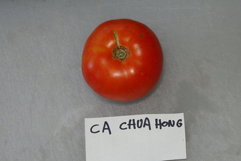 Here is the Ca Chua Hong Tomato , Solanum lycopersicum. This tomato originates from Vietnam and is considered a very old heir