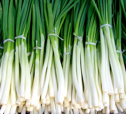 Here is the Evergreen Scallion, Allium fistulosum. They are also be called green onions or bunching onions. This particular variety is often sold in most grocery stores and is the number one choice green onion among gardeners. These make a great alternative to onions if you have a problem with eating onions They have an amazing flavor and cook very fast! Scapes can get to 18 inches tall and will flower on their second year. You can over winter them and they will come up ever year. They are Insect an disease resistant. Open pollinated 65 days.