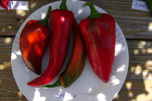 Here is the Carmen Pepper, Capsicum annuum Scoville units: 000 SHU. It is a Sweet Italian Pepper you can grow on the porch or