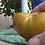 Here is the Humph Tomato Solanum lycopersicum, A rare heirloom tomato, probably dating back several decades. Produces medium