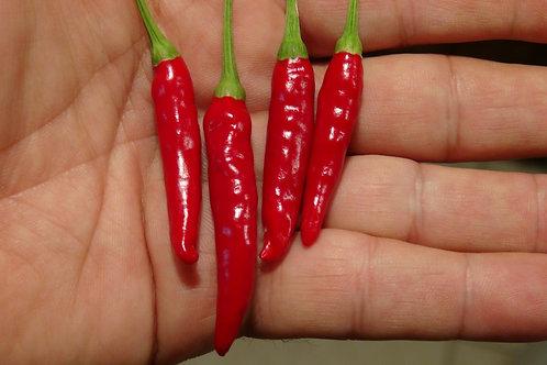 Japones Pepper