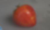 Orange Russian 117 tomato