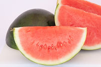 Here is the Sugar Baby Watermelon, Citrullus lanatus. This watermelon was first developed in 1956. These melons come in a perfectly round shape and avrage 7 to 8 inches round. It features a dark green rind with pink flesh and low seeds. Its pink to red flesh is not only luscious but also crisp and firm. Vines can get to 12 feet long and put out as many as a 5 or more fruits! It has a very smooth lightly sweet watermelon flavor. We found them to have a good table life with unopened fruits lasting as long as 10+ days!  Easy to grow and fun! Open pollinated 64 to 87 days.