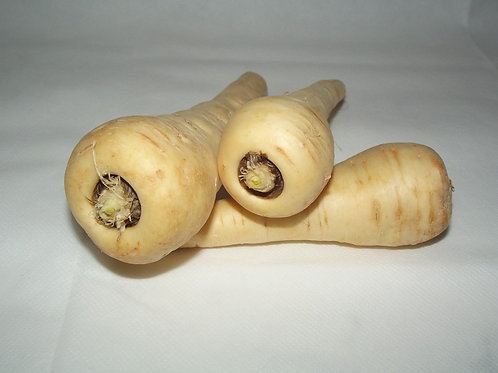 Here is the Hollow Crown Parsnip, Pastinaca sativa. Some confuse this variety with the Parsnip Guernsey variety but in fact i