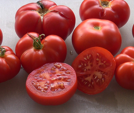 Here is the Homestead Tomato, Solanum lycopersicum, This tomato is a High Heat Tolerance, Meaty Fruit type with red orange color an heavy fruitproduction. These tomatoes can get to about 1 pound. They are crack-resistant with smooth skinned fruits and a nice balance of sweet and tangy flavor witch makes a great tomato sauce. They tend to get smaller in very hot weather. Resistance to fusarium wilt and verticillium wilt. Indeterminate,Open pollinated 80 days.