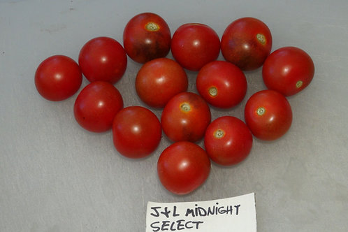 Here is the J&L Midnight Select Tomato, Solanum lycopersicum. This tomato originates from Española New Mexico, USA. The fruit