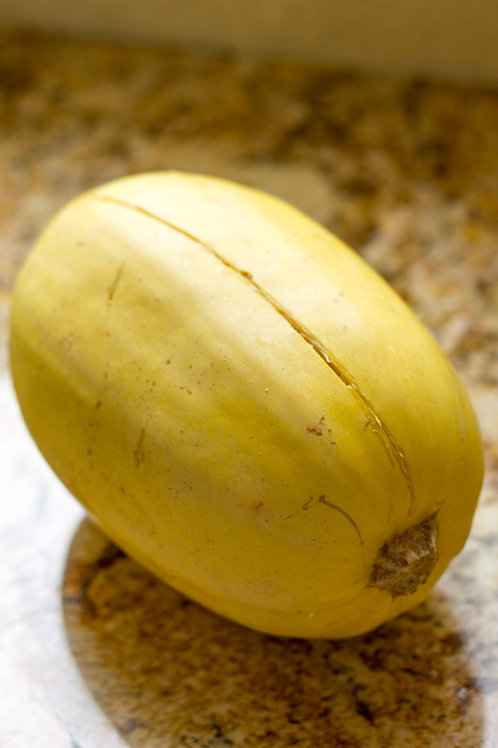 Here is the Spaghetti Squash, Cucurbita pepo subsp. pepo.  It is also known as the Gold String Melon. Thy are among the winte