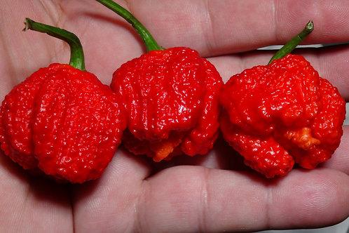 7 Pot Original Red Pepper