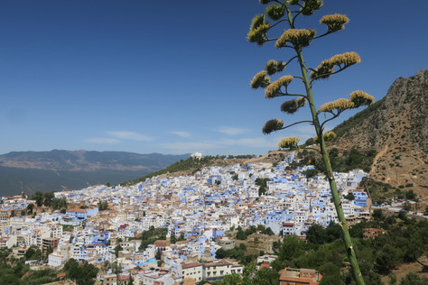 A Girl's Guide to Navigating Morocco